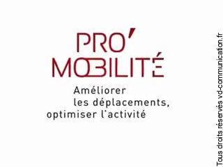 association Orly'Pro'Mobilité