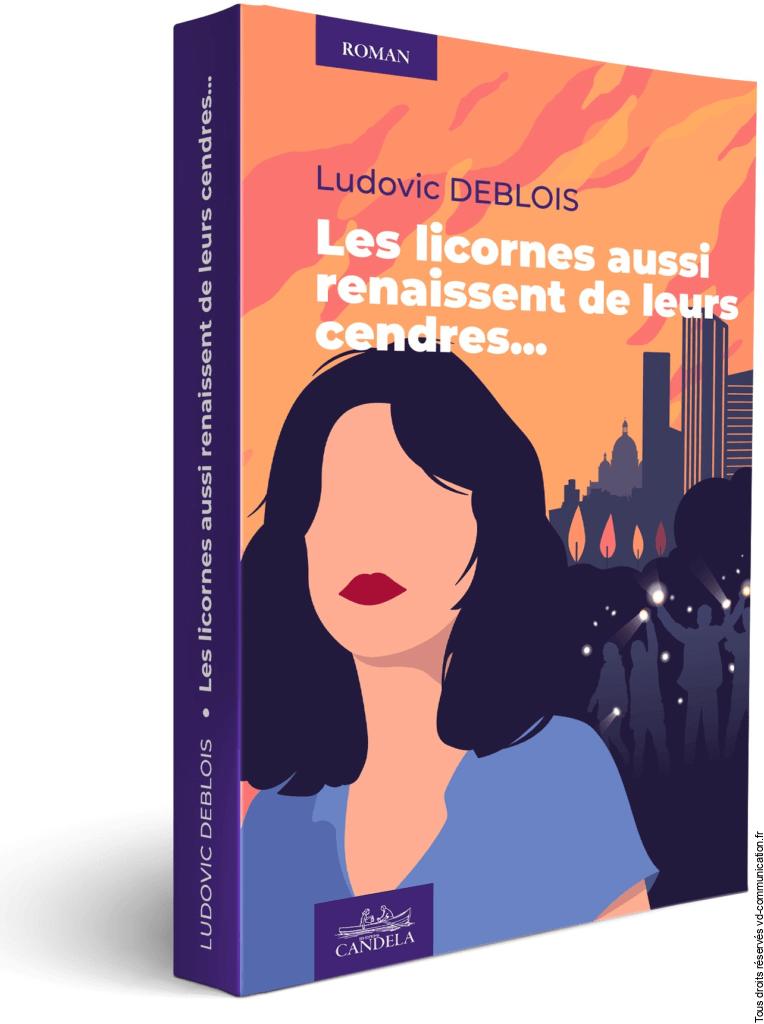 Visuel Couverture Roman Ludovic Deblois